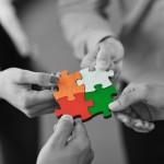 team5 - piese puzzle patrat